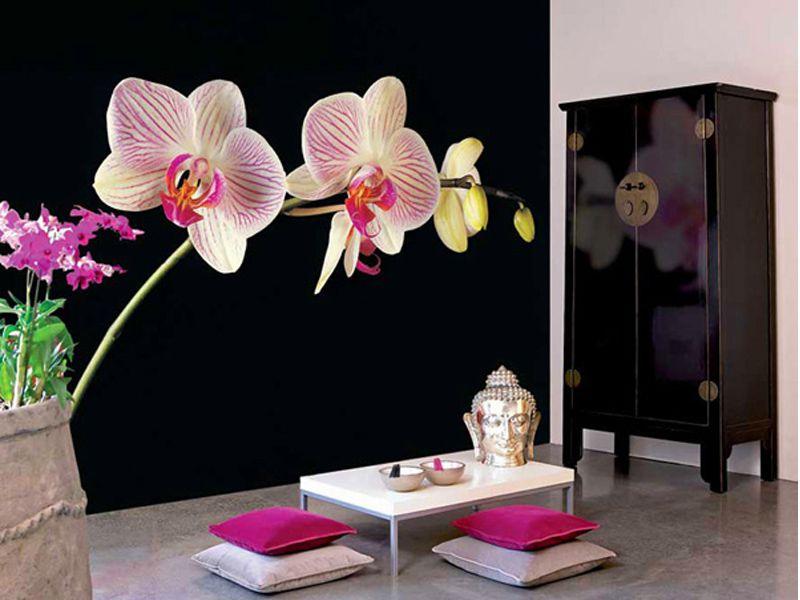 фотообои с орхидеями в интерьере фото